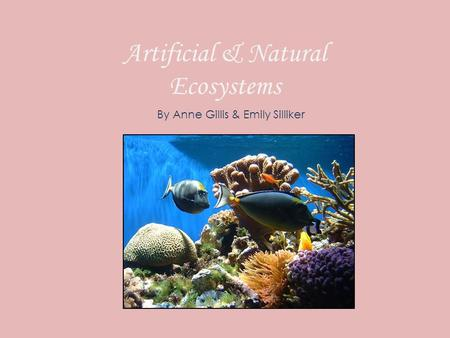 Artificial & Natural Ecosystems By Anne Gillis & Emily Silliker.