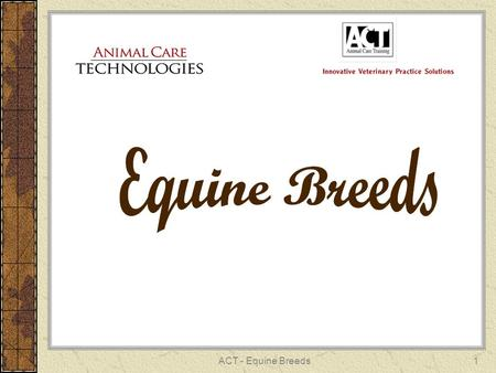 ACT - Equine Breeds1. 2 ANALUSIAN Light Breed 15 to 16.2 hands Marro Medallon.