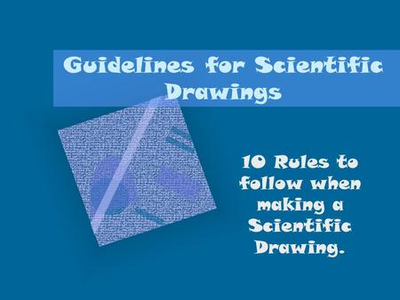Guidelines for Scientific Drawings 10 Rules to follow when making a Scientific Drawing.