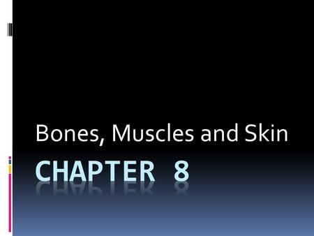 Bones, Muscles and Skin. Section 1  Body Organization and Homeostasis.