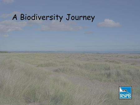 A Biodiversity Journey. Biodiversity Biodiversity is about SPECIES Here are some of Scotland's.