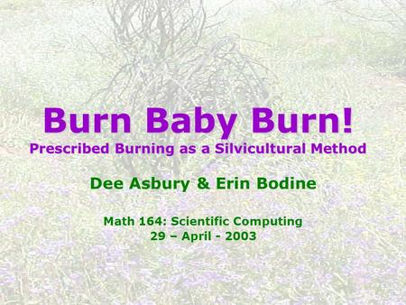 Burn Baby Burn! Prescribed Burning as a Silvicultural Method Dee Asbury & Erin Bodine Math 164: Scientific Computing 29 – April - 2003.