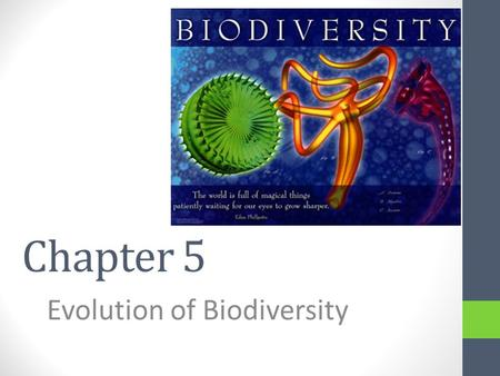 Chapter 5 Evolution of Biodiversity. What is biodiversity? Three different scales – all three contribute to the overall biodiversity of Earth 1.Ecosystem.