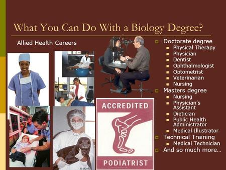 What You Can Do With a Biology Degree?  Doctorate degree Physical Therapy Physician Dentist Ophthalmologist Optometrist Veterinarian Nursing  Masters.