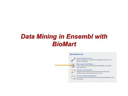 1 of 38 Data Mining in Ensembl with BioMart. 2 of 38 Simple Text-based Search Engine.