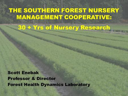 THE SOUTHERN FOREST NURSERY MANAGEMENT COOPERATIVE: