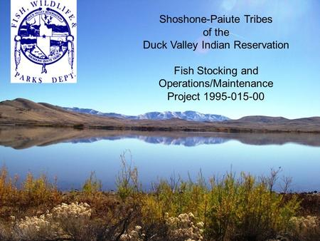 Shoshone-Paiute Tribes of the Duck Valley Indian Reservation Fish Stocking and Operations/Maintenance Project 1995-015-00.