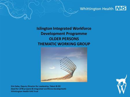 Islington Integrated Workforce Development Programme OLDER PERSONS THEMATIC WORKING GROUP Kim Sales, Deputy Director for Leadership, Talent & OD (lead.