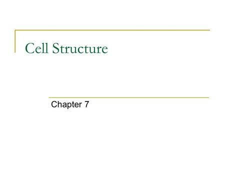 Cell Structure Chapter 7. 7-1: Introduction to Cells.