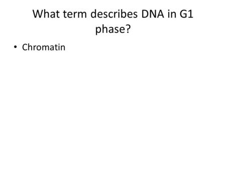 What term describes DNA in G1 phase? Chromatin. What happens to the DNA in S Phase? What is DNA called? Doubled, duplicated, copied Chromatin.