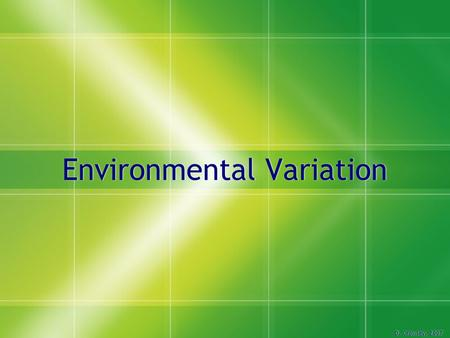 Environmental Variation D. Crowley, 2007. Environmental Variation  To understand how environmental variation occurs.