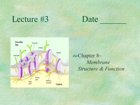 Lecture #3Date ______  Chapter 8~ Membrane Structure & Function.