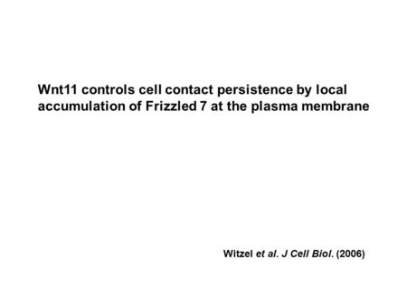 Witzel et al. J Cell Biol. (2006) Wnt11 controls cell contact persistence by local accumulation of Frizzled 7 at the plasma membrane.