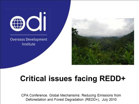 Critical issues facing REDD+ CPA Conference. Global Mechanisms: Reducing Emissions from Deforestation and Forest Degradation (REDD+), July 2010.