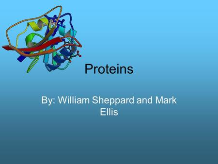 Proteins By: William Sheppard and Mark Ellis. Benefits Proteins have many benefits for your body. They are the most versatile natural polymer. They can.