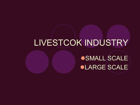 LIVESTCOK INDUSTRY SMALL SCALE LARGE SCALE. DAIRY CATTLE INDUSTRY.