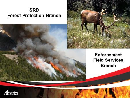 SRD Forest Protection Branch Enforcement Field Services Branch.
