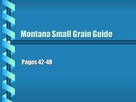 Montana Small Grain Guide Pages 42-48. Crop Rotation: Sidney Research Center Results b Highest annual yields were obtained with continuous cropping b.