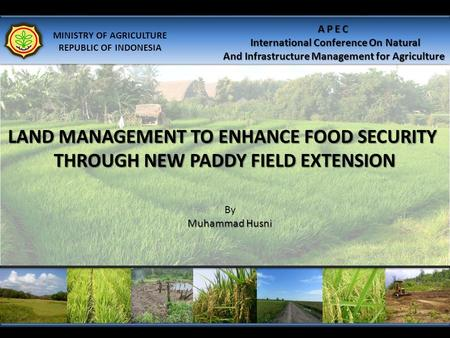 LAND MANAGEMENT TO ENHANCE FOOD SECURITY THROUGH NEW PADDY FIELD EXTENSION By Muhammad Husni MINISTRY OF AGRICULTURE REPUBLIC OF INDONESIA APEC International.