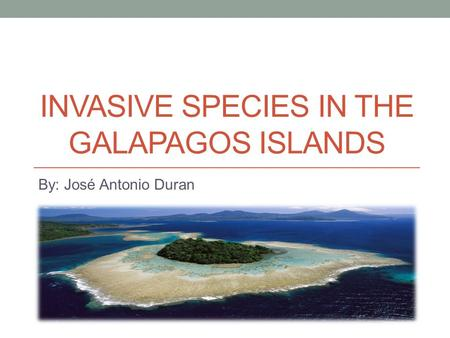 INVASIVE SPECIES IN THE GALAPAGOS ISLANDS By: José Antonio Duran.