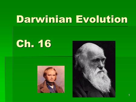 Darwinian Evolution Ch. 16 1. Darwin's Achievement  Darwin's Theory of Evolution is one of the greatest intellectual achievements in history of science.
