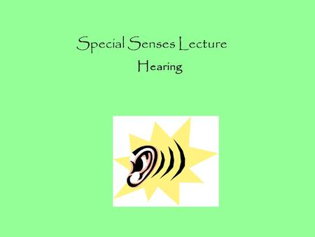 Special Senses Lecture Hearing. Our ears actually serve two functions: 1)Allow us to hear 2)Maintain balance and equilibrium Hearing and balance work.
