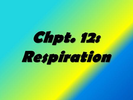 Chpt. 12: Respiration. Two types of respiration External Respiration Internal respiration -is the process by which - is the controlled organisms exchange.