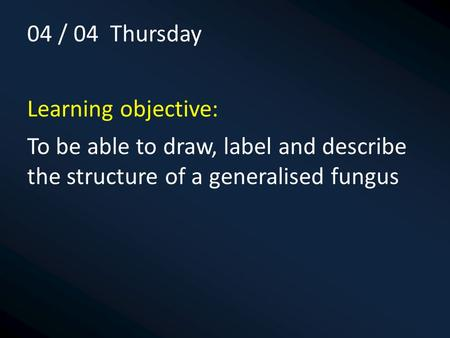 04 / 04 Thursday Learning objective: To be able to draw, label and describe the structure of a generalised fungus.