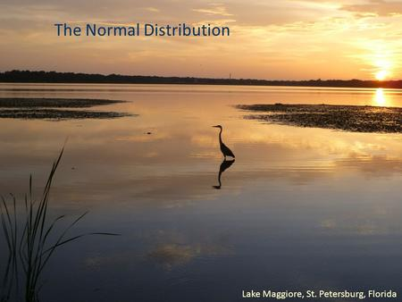 The Normal Distribution Lake Maggiore, St. Petersburg, Florida.