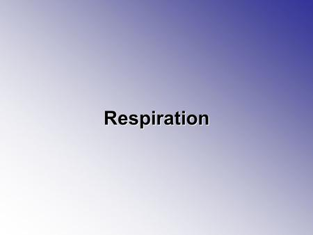 Respiration. Respiration Respiration the process by which food molecules are broken down –Food molecules are 6-carbons sugars –You take in food which.