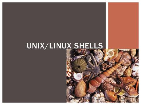"UNIX/LINUX SHELLS.  ""A Unix shell is a command-line interpreter or shell that provides a traditional user interface for the Unix operating system and."