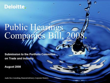 Public Hearings Companies Bill, 2008. Submission to the Portfolio Committee on Trade and Industry August 2008.
