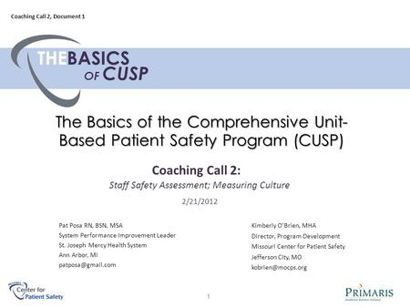 The Basics of the Comprehensive Unit- Based Patient Safety Program (CUSP) Pat Posa RN, BSN, MSA System Performance Improvement Leader St. Joseph Mercy.