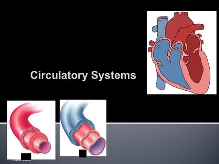 2008-2009 Circulatory Systems  Animal cells exchange material across their cell membrane  fuels for energy  nutrients  oxygen  waste (urea, CO.