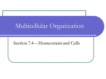 Multicellular Organization Section 7.4 – Homeostasis and Cells.