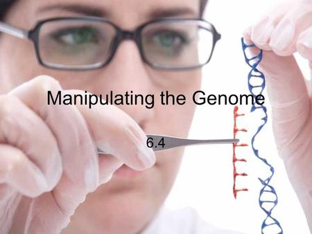 Manipulating the Genome 6.4. Recombinant DNA genetic information from different organisms can be combined, forming recombinant DNA.