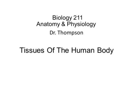 Biology 211 Anatomy & Physiology I Dr. Thompson Tissues Of The Human Body.