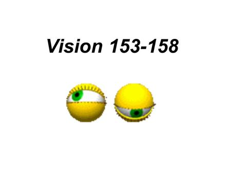 Vision 153-158. Structure of the Eye We only use light energy to see.
