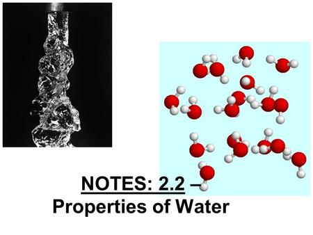 NOTES: 2.2 – Properties of Water. Water Overview… Water is perhaps the most important compound in living organisms Because so many substances can dissolve.