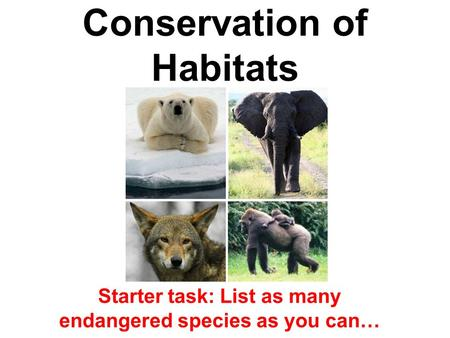 Conservation of Habitats Starter task: List as many endangered species as you can…