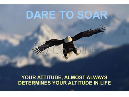 YOUR ATTITUDE, ALMOST ALWAYS DETERMINES YOUR ALTITUDE IN LIFE