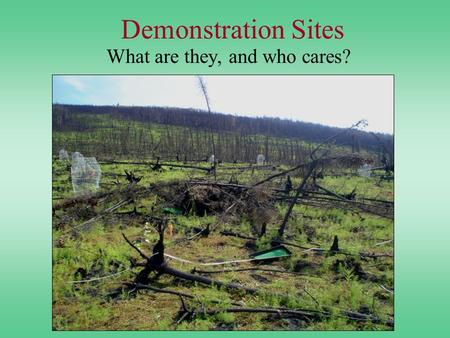 Demonstration Sites What are they, and who cares?.