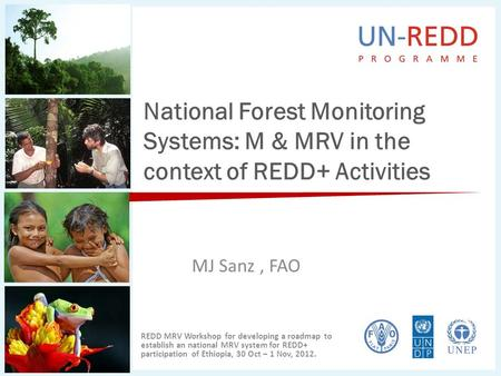National Forest Monitoring Systems: M & MRV in the context of REDD+ Activities MJ Sanz, FAO REDD MRV Workshop for developing a roadmap to establish an.