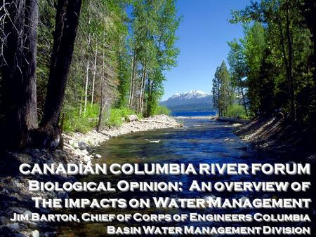 CANADIAN COLUMBIA RIVER FORUM Biological Opinion: An overview of The impacts on Water Management Jim Barton, Chief of Corps of Engineers Columbia Basin.