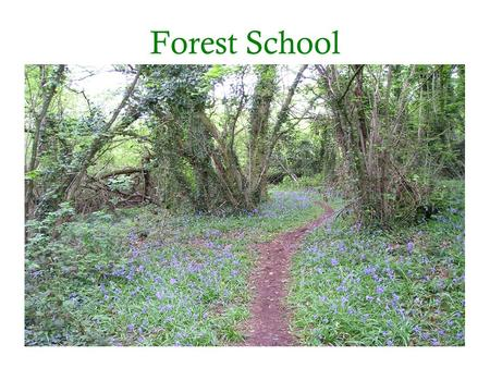 Forest School. What is Forest School? Woodland setting Programme of sessions Trained Leader.