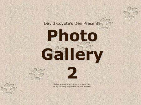 David Coyote's Den Presents Photo Gallery 2 Slides advance at 20 second intervals, or by clicking anywhere on the screen.