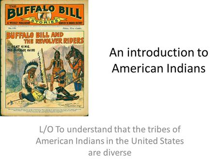 an introduction to the diversity in the nation in the united states Human rights and cultural diversity in africa  introduction globalisation has  especially when major powers such as the united states,.