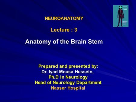 NEUROANATOMY Lecture : 3 Anatomy of the Brain Stem Prepared and presented by: Dr. Iyad Mousa Hussein, Ph.D in Neurology Head of Neurology Department Nasser.