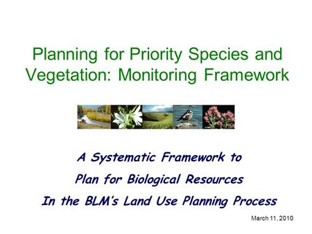 March 11, 2010 Planning for Priority Species and Vegetation: Monitoring Framework A Systematic Framework to Plan for Biological Resources In the BLM's.
