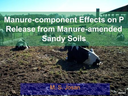 Josan Manure-component Effects on P Release from Manure-amended Sandy Soils M. S. Josan.